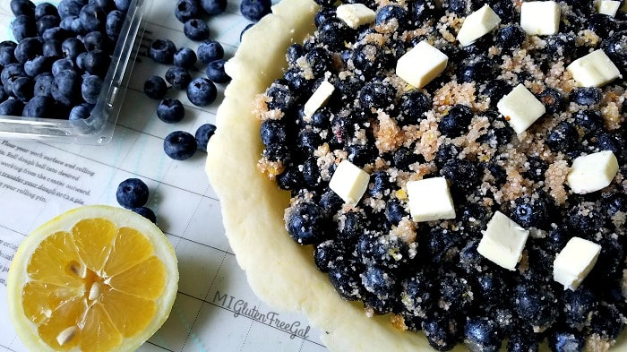 Gluten-Free Blueberry Pie Crust filled with Michigan blueberries