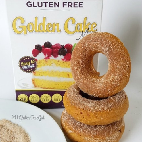 Two Ingredient Allergen-Friendly Gluten-Free Pumpkin Donuts