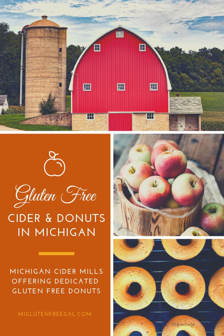 Michigan Cider Mills with Gluten Free Donuts